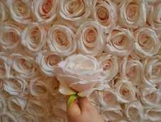 Blush-Wall-close-up